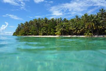 Tropical island beach with luxuriant vegetation