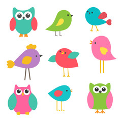 Vector set cute birds and owls