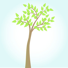 green tree on blue background