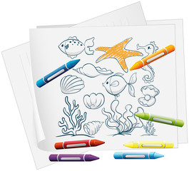 A paper with a doodle design of the different sea creatures
