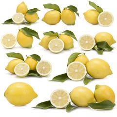 Colección de fotografías de limones sobre fondo blanco