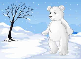 A polar bear freezing