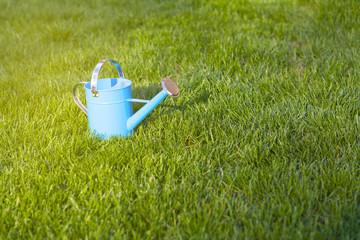 Blue Watering Can In Garden