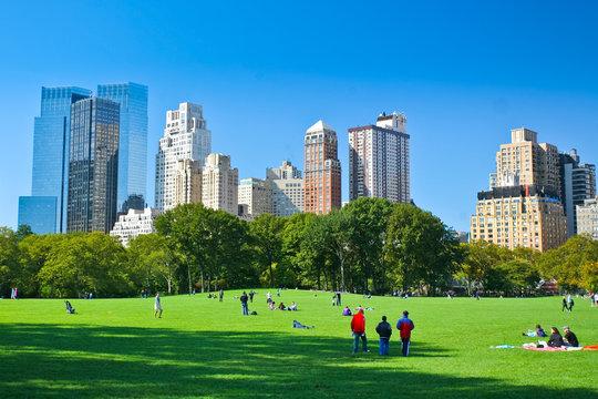 Meadow - Central Park - New York