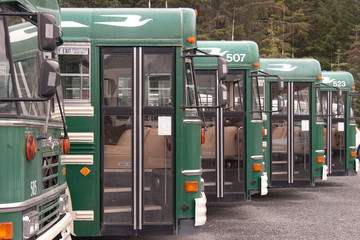Green school buses