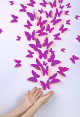 Paper butterflies fly on wall in different directions
