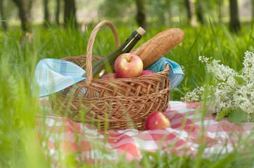 Fotorolgordijn Picknick picnic