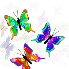 Illustration. Butterfly.
