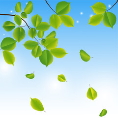 Abstract background with green leaves.