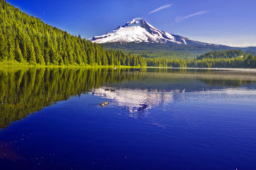 Mount Hood Reflection at Trillium Lake