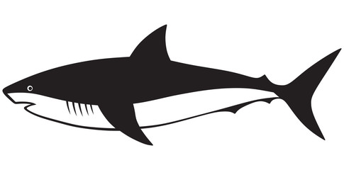 Silhouette shark isolated on white background