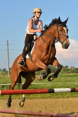 Printed roller blinds Horseback riding équitation