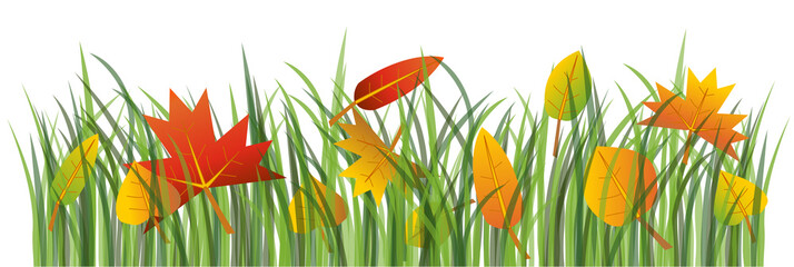 Colorful autumn leaves on the green grass illustration