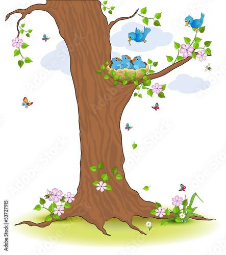 F tterung vogelnest im baum stockfotos und lizenzfreie - Baum comic bilder ...