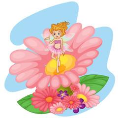 A flower pixie above a big pink flower