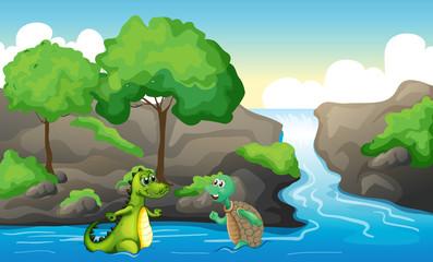 A turtle and a crocodile