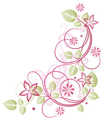 Blätter, Ranke, Blumen, Blüten, rosa, pink, grün
