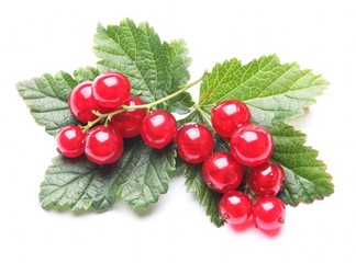 Red currant and leaves on white background