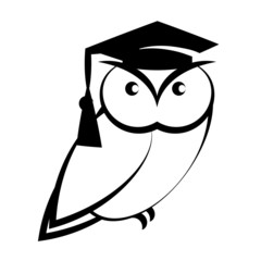 Owl with graduation hat isolated on white background