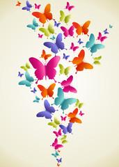 Butterfly colorful splash