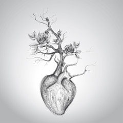 The heart is in blossom / Surreal romantic sketch