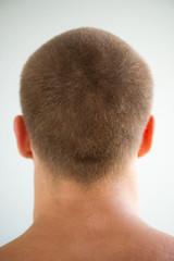 man's head and nape