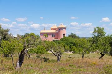 Portugal - Algarve - Land
