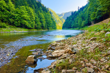 Stones and rocks in the morning in The Dunajec River Gorge