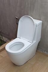 Fush Toilet and Sprayer