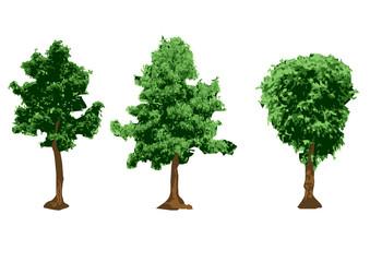 urban trees silhouettes