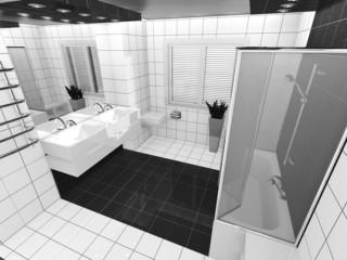 white black bathroom