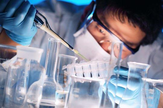 Scientist examining samples