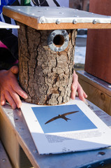 seller hands handmade bird house nesting box