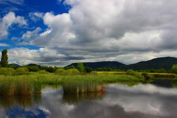 étang de la plaine
