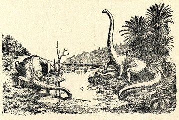 Jurassic landscape (Diplodocus by Hay  1910)