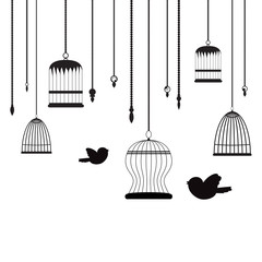 Recess Fitting Birds in cages birds and birdcages background