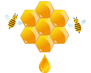 Hive with bee and honey