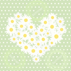 Seamless pattern with heart of camomiles