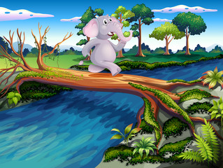 An elephant crossing a tree bridge