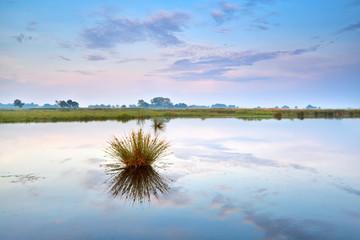 Fototapeta blue and pink sunrise on lake