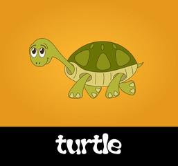 Vector illustration of cute smiling cartoon turtle