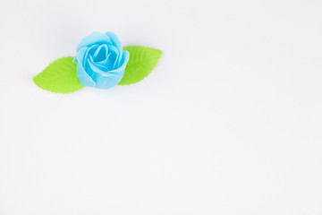 Blue rose isolated on a white backgrounds