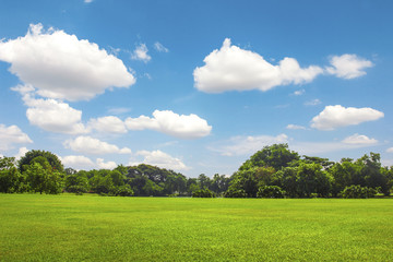 Green park outdoor with blue sky cloud