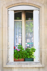 Traditional window whith flowers in Paris, France