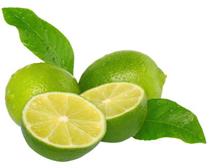 Three fresh wet lime with leaves