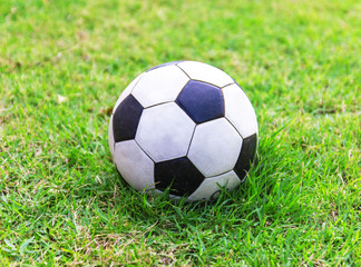 football green grass ball stadium