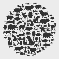 animal circle pattern