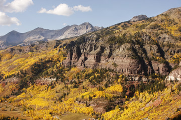 Fototapete - Scenic near Telluride, Uncompahgre National Forest, Colorado