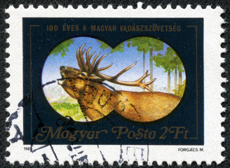 stamp shows the image of deer through binoculars