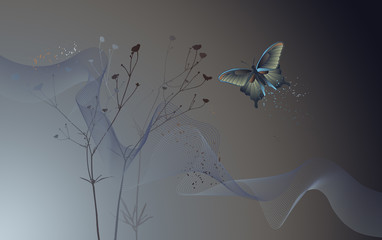 Desktop wallpaper - background with a butterfly